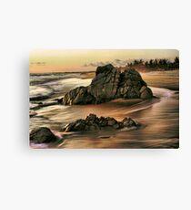 Evening on the Playa Canvas Print