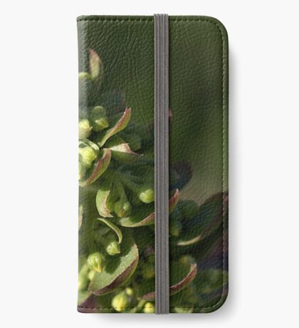Succulent iPhone Wallet