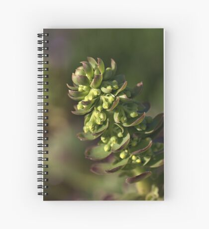 Succulent Spiral Notebook
