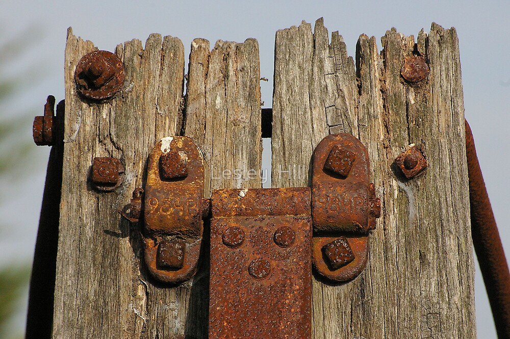 Wood and Rust by Lesley  Hill