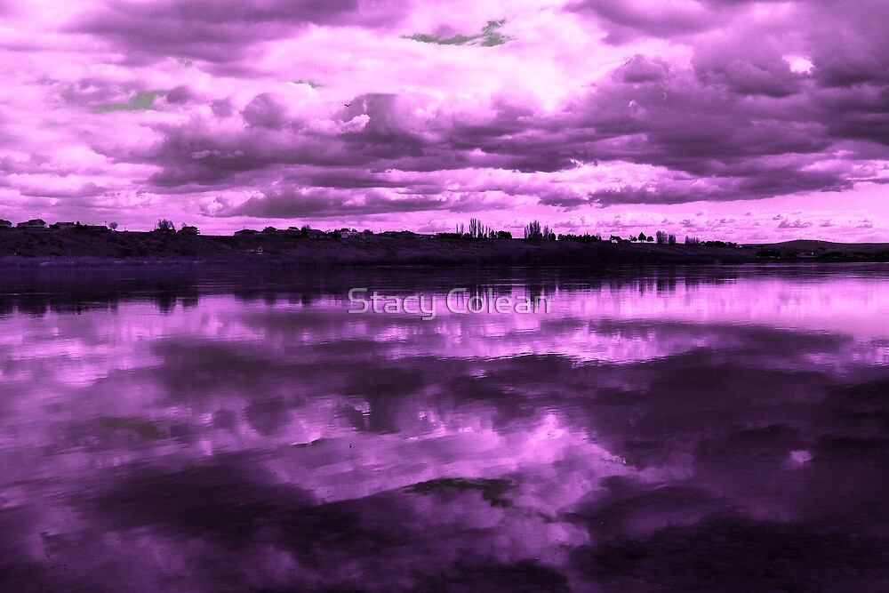 Clouds in Purple by Stacy Colean