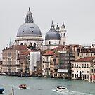 Venice by Gillian Anderson LAPS, AFIAP