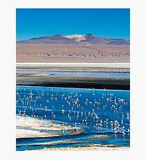 Ethereal Beauty - Laguna Colorada, Bolivian Altiplano Photographic Print