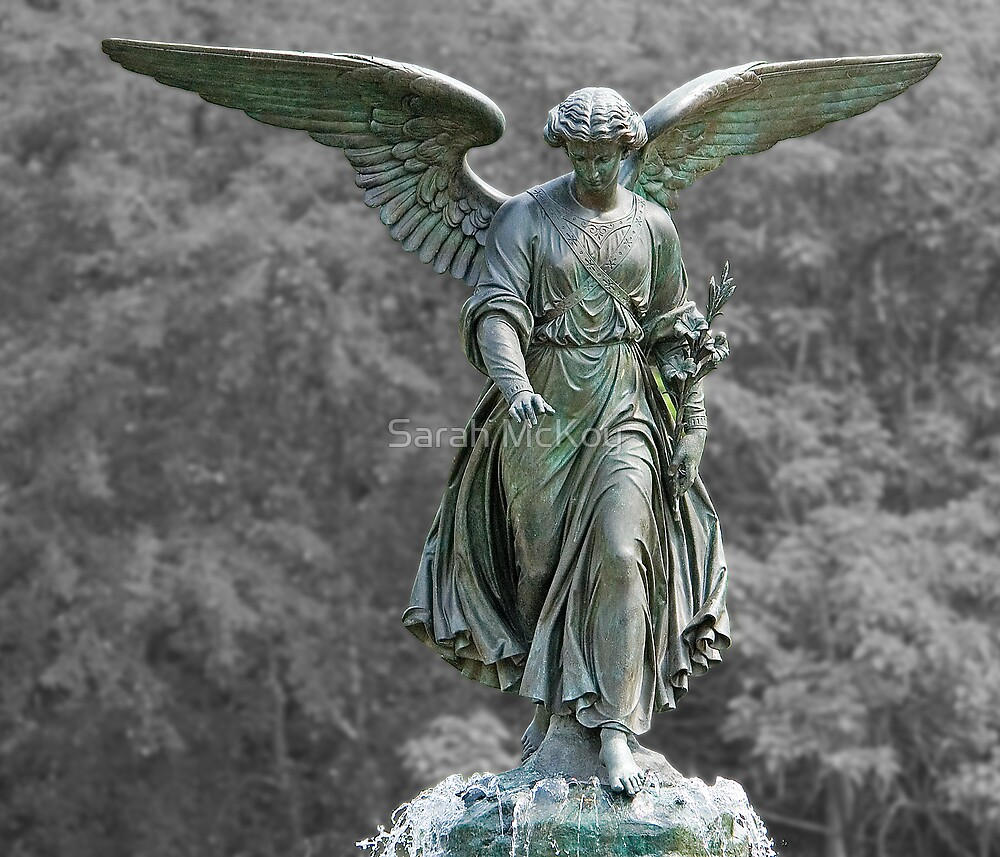 The Angel of the Waters by Sarah McKoy