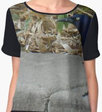 Grackle Women's Chiffon Top