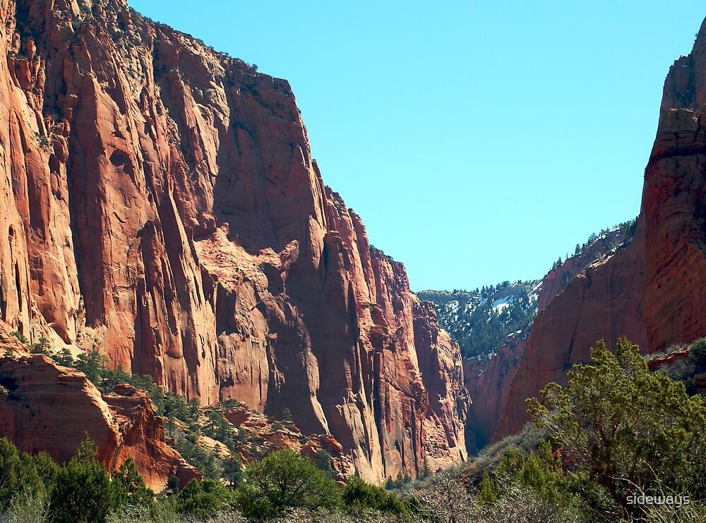 Zion National Park by sideways