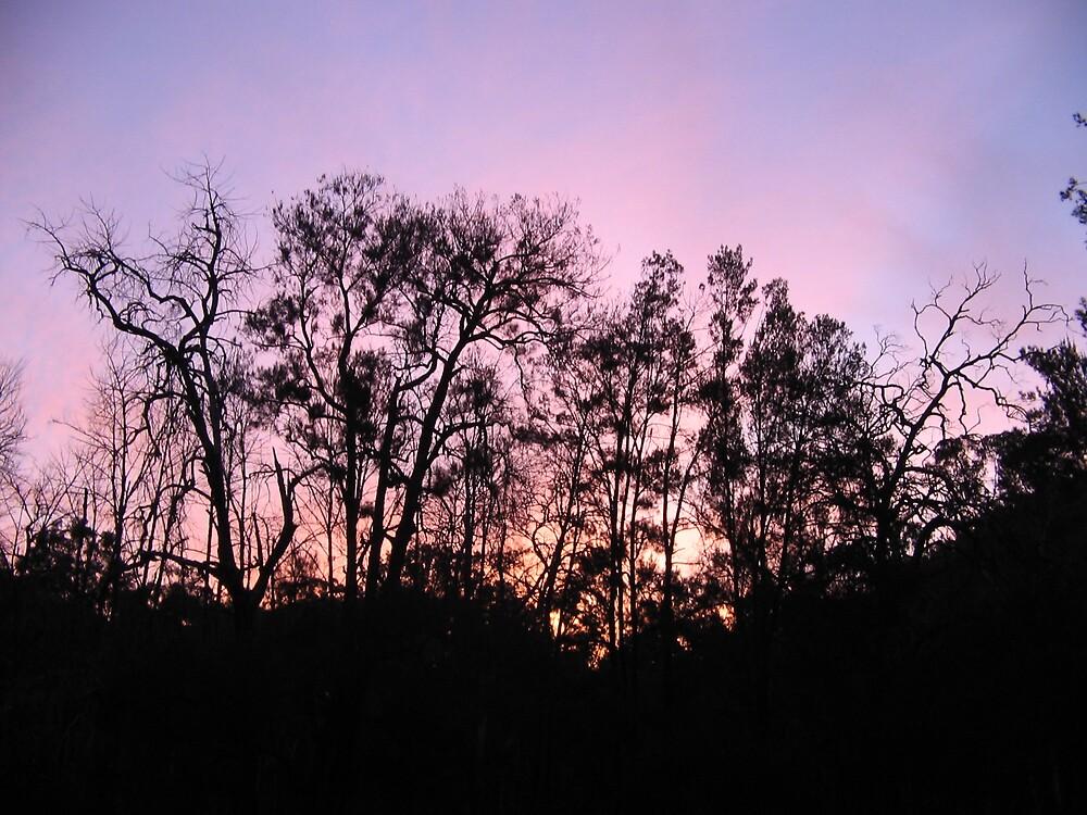 my favourite sky line by Zamia