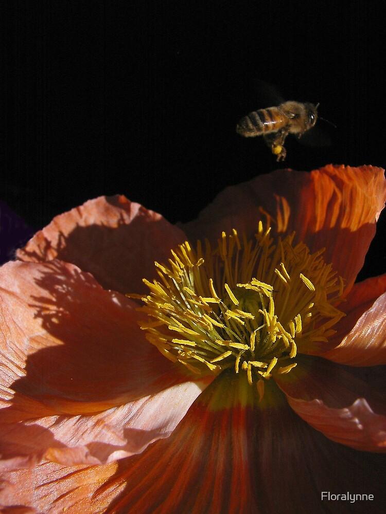 Bee Gone by Floralynne