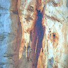 The Tree Bark Collection # 17  by Philip Johnson