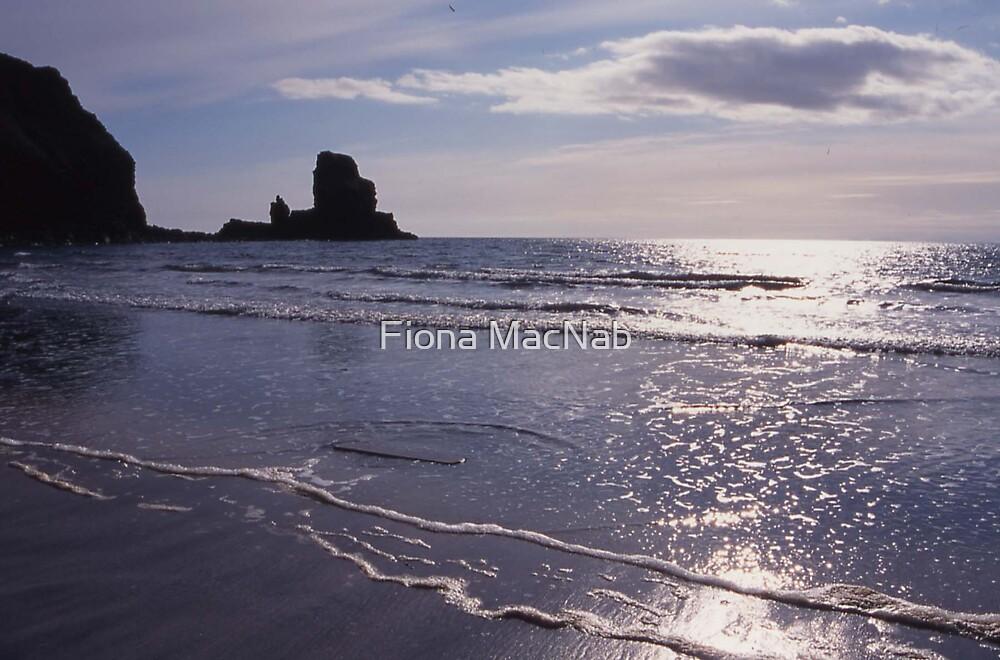 Talisker Bay II by Fiona MacNab