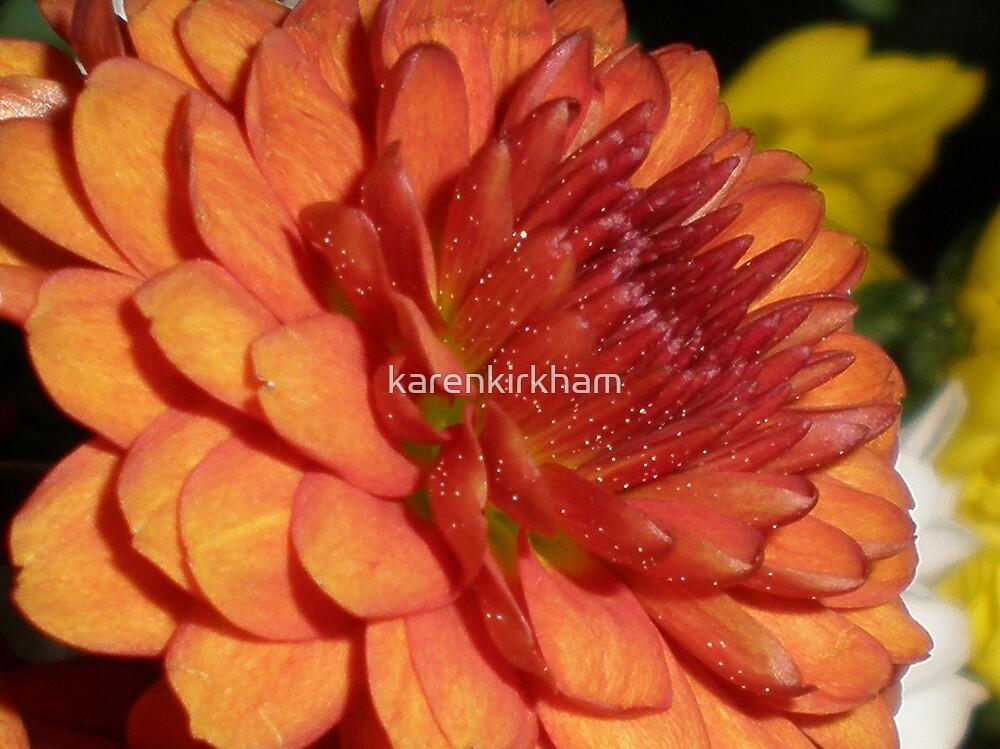 Russet Chrysanthemum by karenkirkham