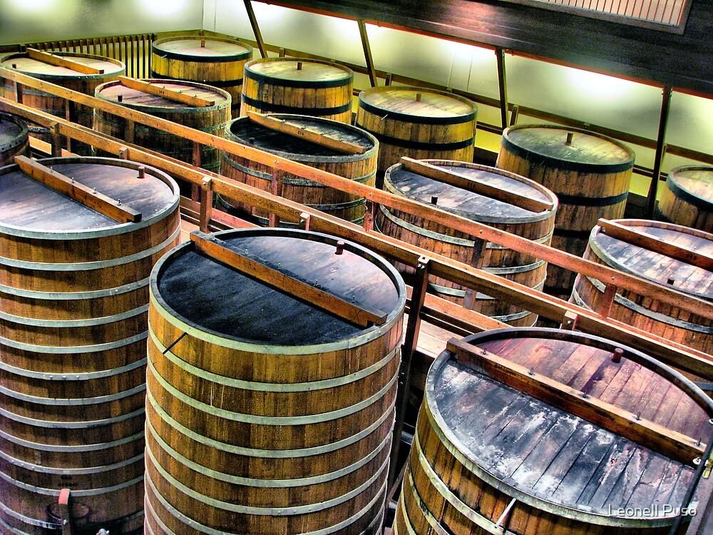 Big barrels by Leonell Puso