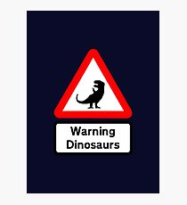 Warning: Dinosaurs (road sign) Photographic Print