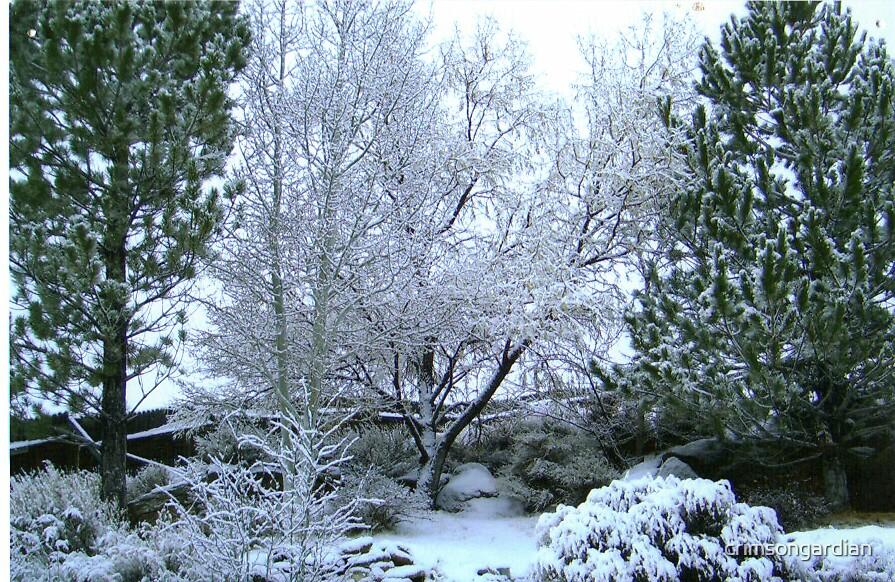 winter wonder land by crimsongardian