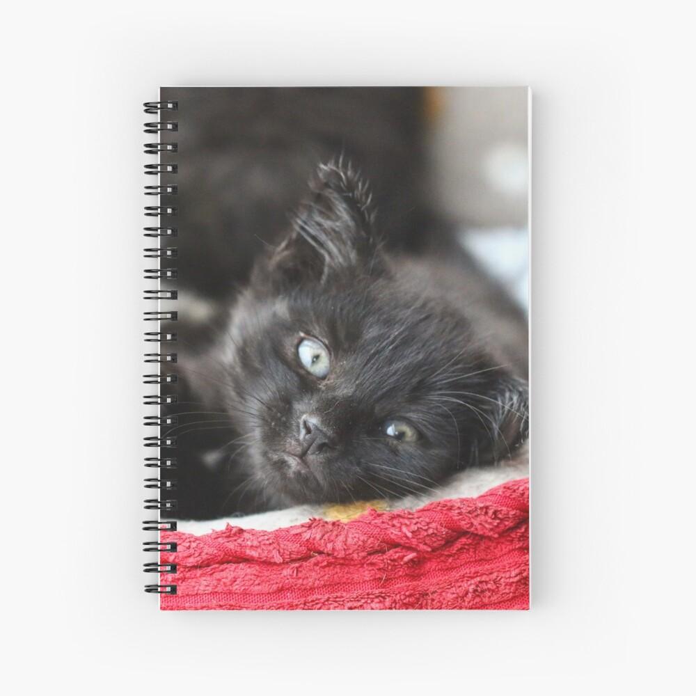 Acogedor Cuaderno de espiral