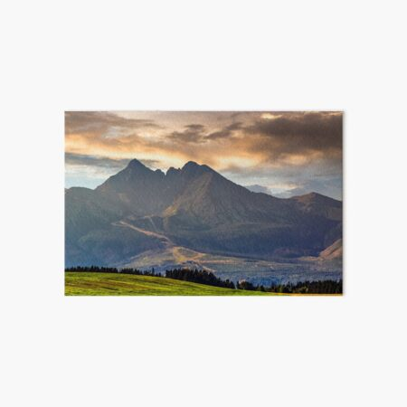 rural field in Tatra mountains Art Board Print