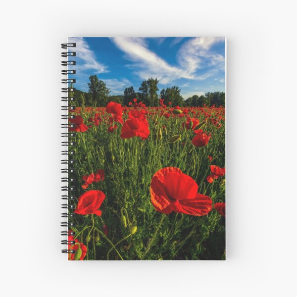 poppy flowers field in mountains Spiral Notebook