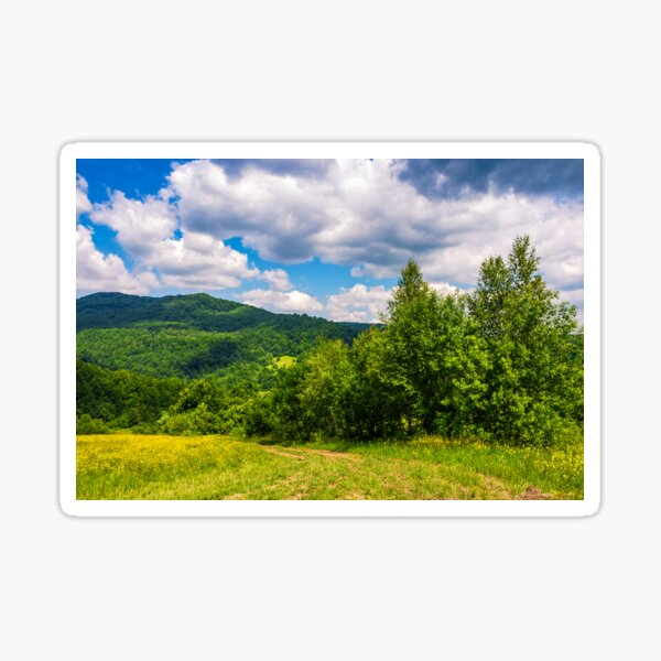 country road through rural fields in mountains summer landscape  Sticker