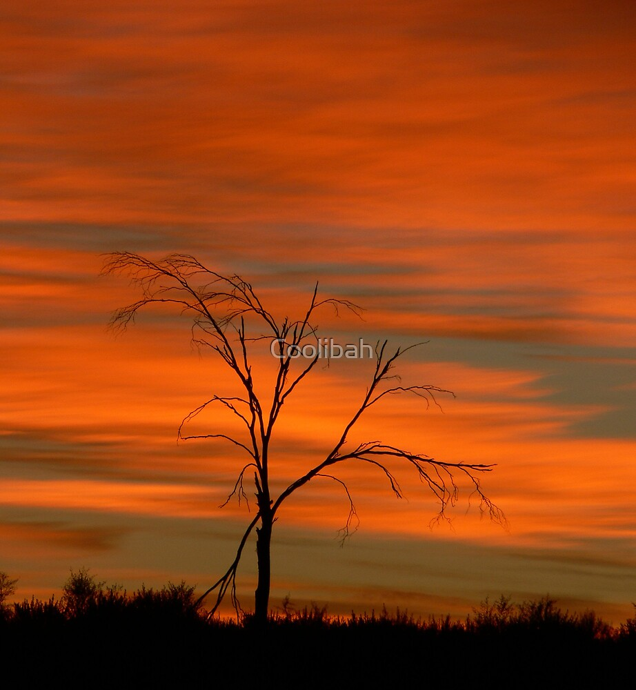 Sunrise today by Ruth Anne  Stevens