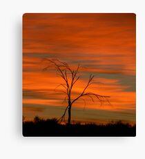 Sunrise today Canvas Print