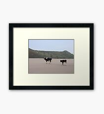 Cows Go On Holiday Too Framed Print