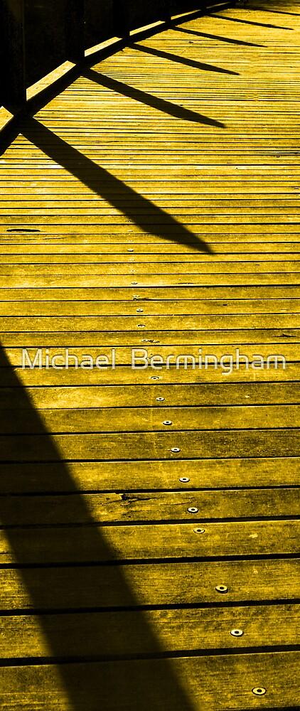 Bumblebee by Michael  Bermingham