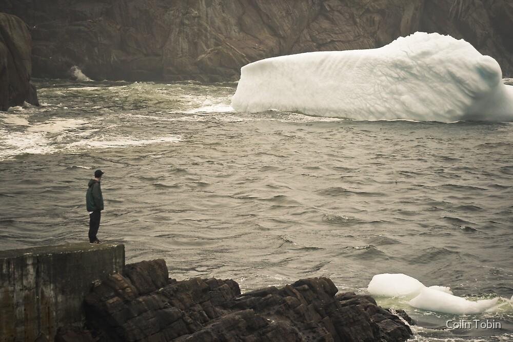 Cold Gaze by Colin Tobin