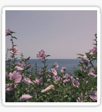 Flowers by the beach Sticker