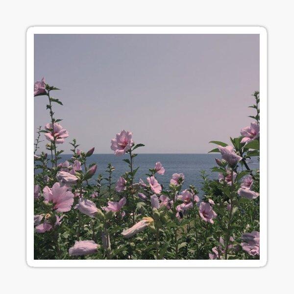 Flowers by the beach Sticker