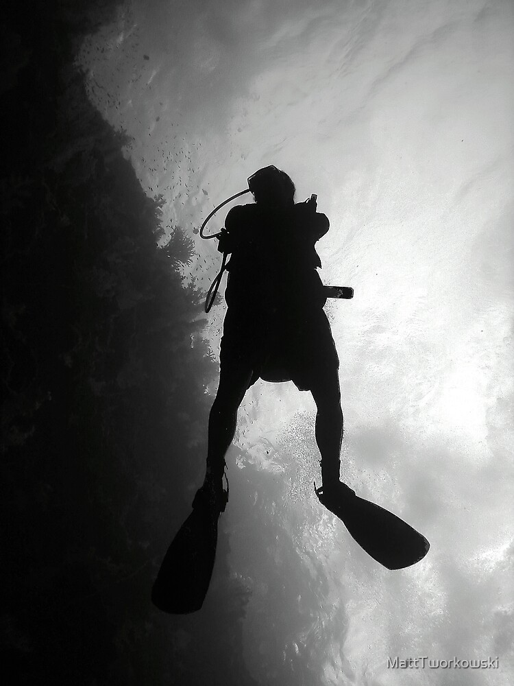 The Dive Experience by MattTworkowski