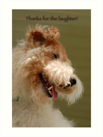 Thanks for the laughter by Bonnie T.  Barry