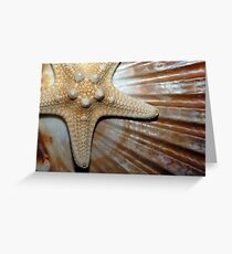 Gifts from the Sea Greeting Card