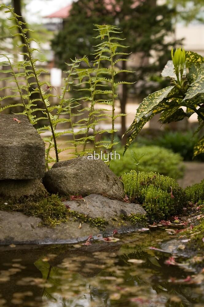 Little pond by ablyth