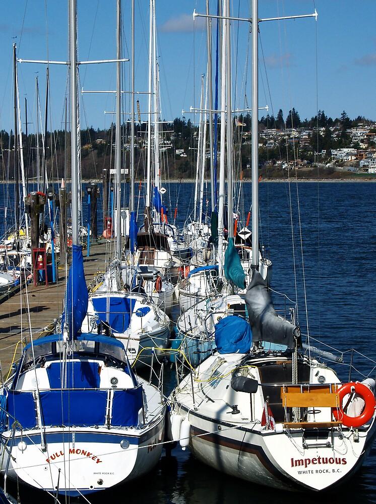 Sailing by BrigitteC