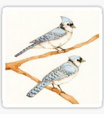 Blue Jays Sticker