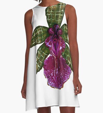 Maias Pinque A-Line Dress