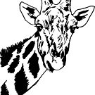 Giraffe Meme by Guusdewolf