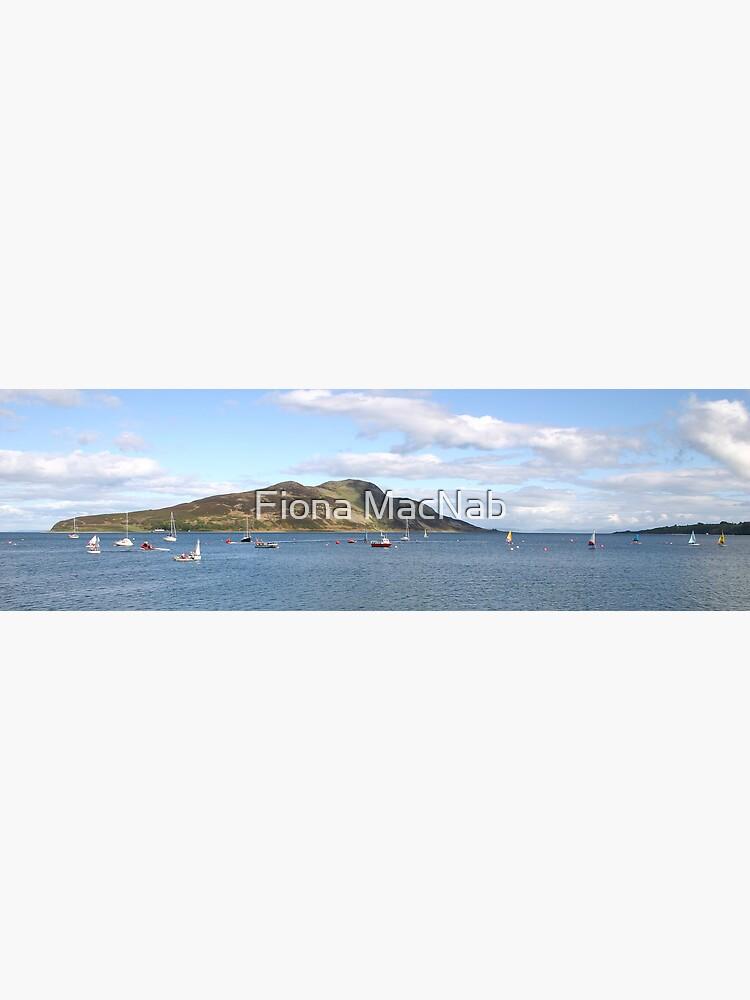 Holy Isle panorama by orcadia