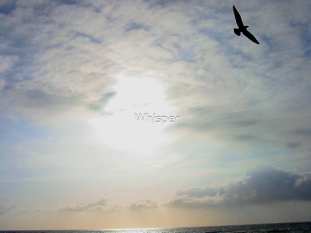 Freedom by Whisper