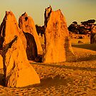 Pinnacles 4 by Werner Padarin