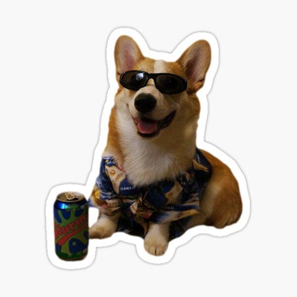 Cool Corgi Sticker