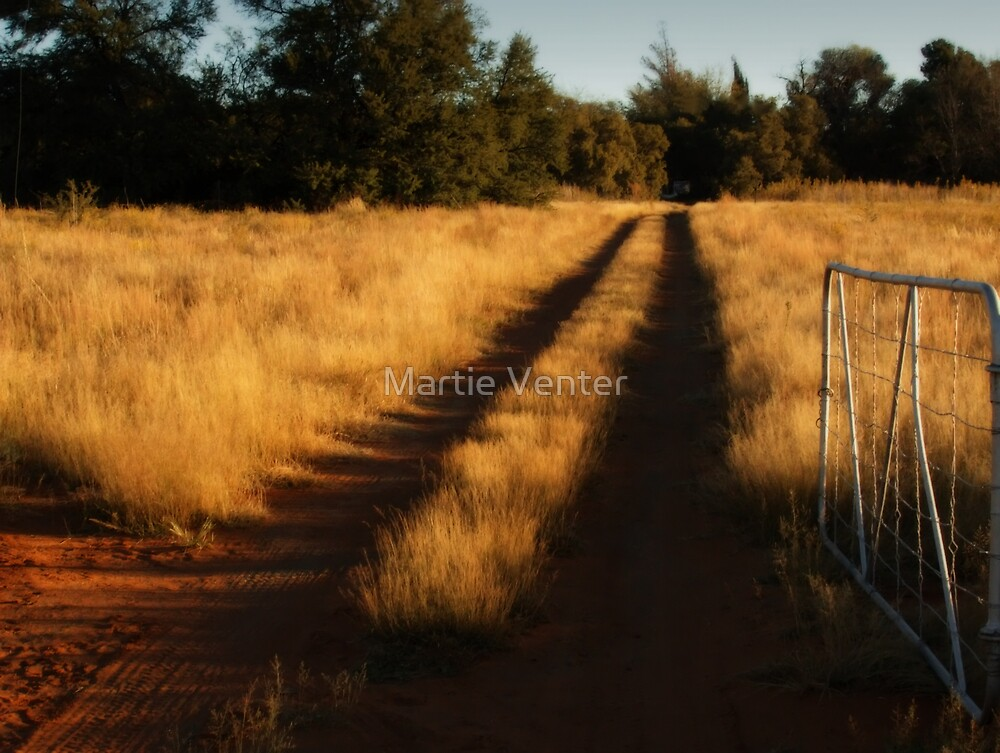 What Lies Ahead by Martie Venter