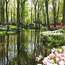 The Lake - Keukenhof Gardens, Holland von BlueMoonRose