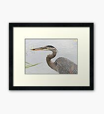 The unlikely event Framed Print