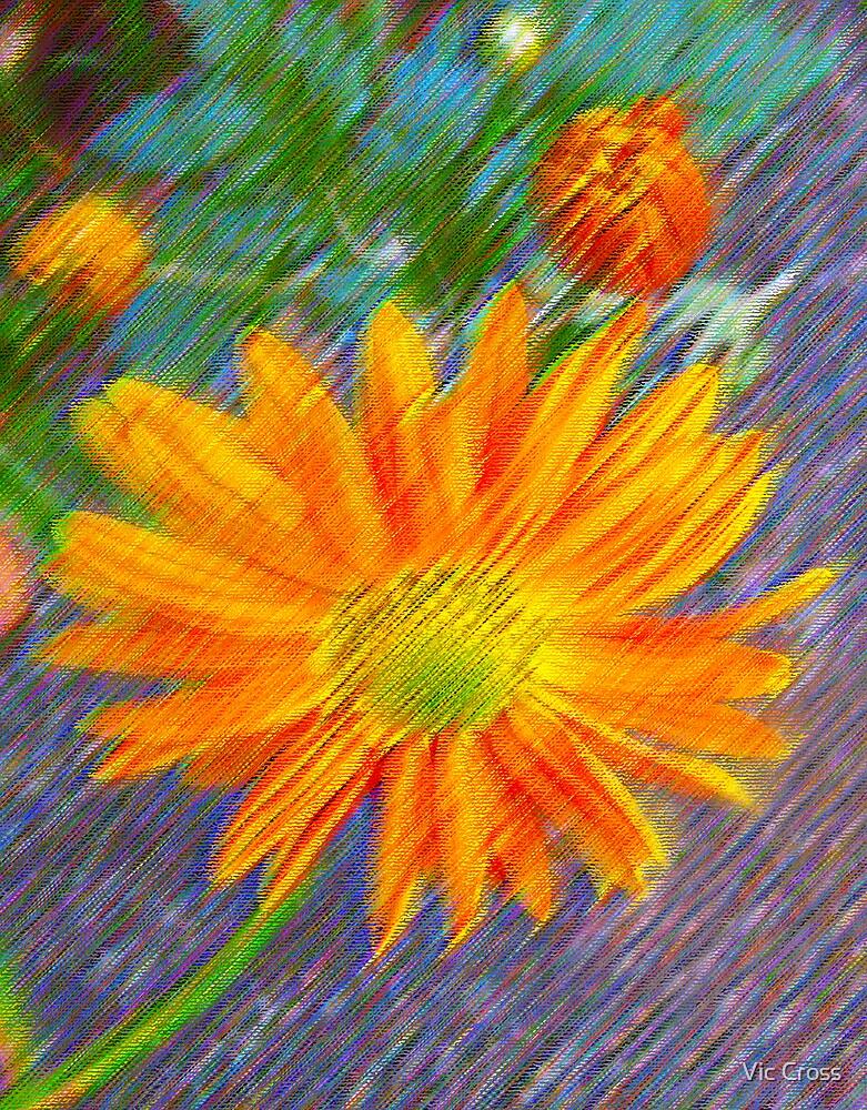 Golden Chrysanthemum by Vic Cross