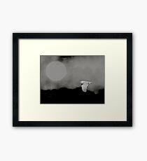 Moonlit migrant Framed Print