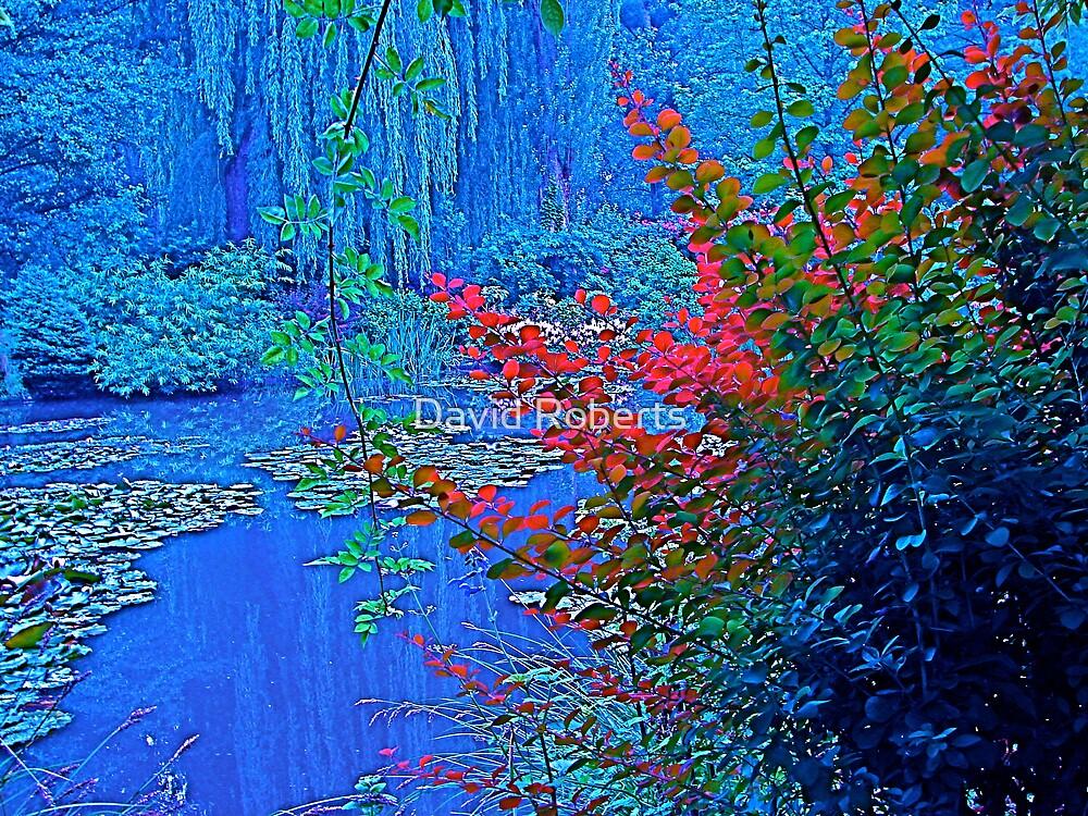 Monet's garden in blue by David Roberts
