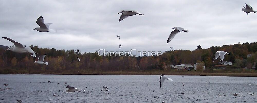 Birds in Flight by ChereeCheree