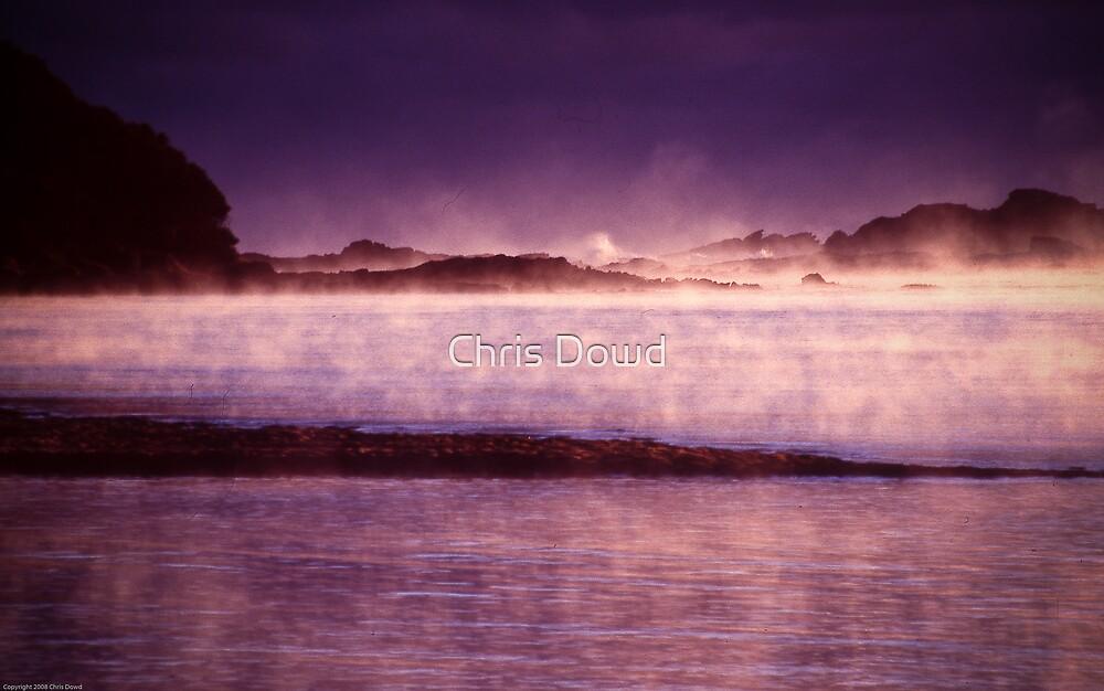 Purple dawn by Chris Dowd