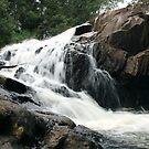 Jackson Creek Falls  by gail woodbury